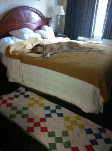 Libby's king size sleeping mat