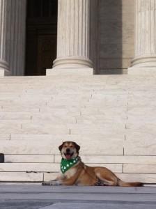 Supreme Court Libby