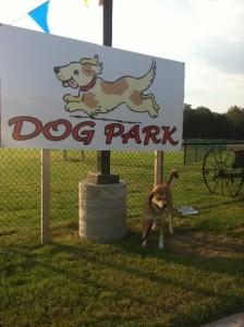Dog park at a truck stop, Grand Prairie, Texas