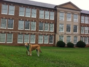 Libby in front of R. J. Reynolds High School