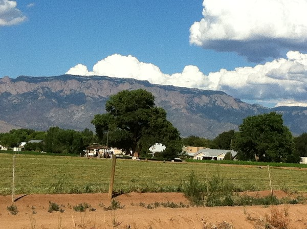 Sandia Mountains from the Rio Grande Valley